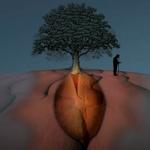 Un dono, senza attesa dello scambio, produce la vita: l'uomo che piantava gli alberi