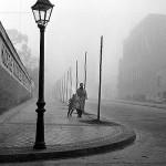 """Le più belle frasi de """"L'ombra del vento"""" di Carlos Ruiz Zafòn"""